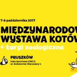 Międzynarodowa Wystawa Kotów - Pruszków